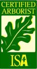 ISA Certified Tree Worker and Arborist